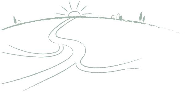 stip-horizon-bloeikracht